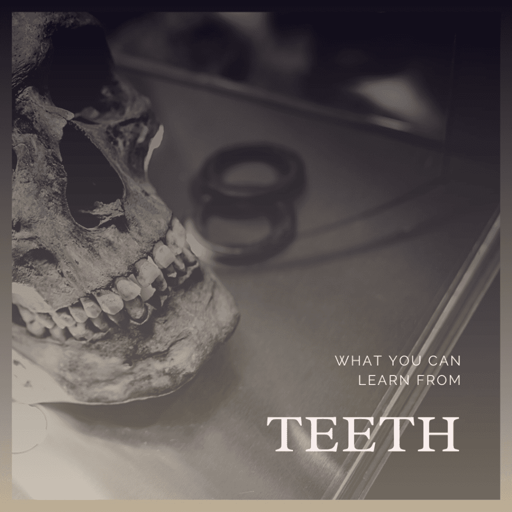 What You Can Learn From teeth